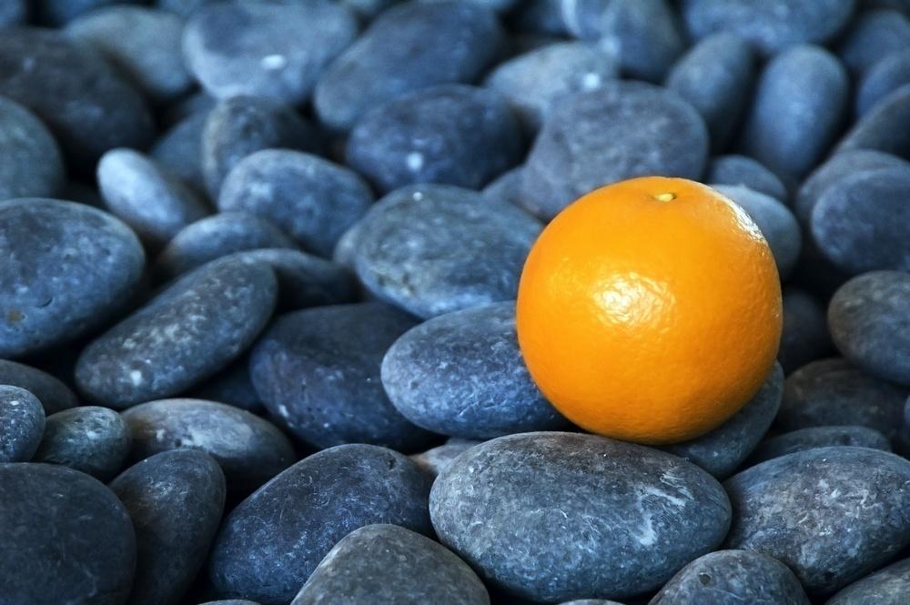 Orange on smooth rocks.jpeg